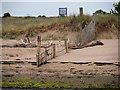 SX9880 : Dawlish Warren Sand by David Dixon