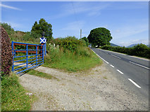 NS0768 : A blue gate by Thomas Nugent