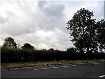 SO7504 : Bristol Road, Cambridge by David Howard