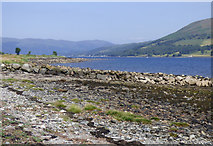 NS0669 : Drystane dyke on the shore by Thomas Nugent