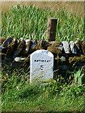 NS0670 : Milestone near Stuck Farm by Thomas Nugent