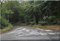 SO8711 : Little road off the A46, Painswick by David Howard