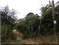 TL8328 : Footpath to Bourne Brook by Adrian Cable