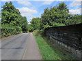 TL4038 : Barley: along Picknage Road by John Sutton
