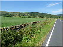 NS0670 : Field near Stuck Farm by Thomas Nugent