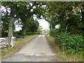 NY3940 : Driveway to Oakergill by Oliver Dixon