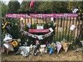 SK5236 : Birthday tributes by David Lally