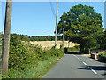 TR0045 : Sandyhurst Lane by Robin Webster