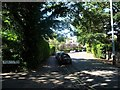 TQ5838 : Rodmell Road, Royal Tunbridge Wells by Christine Johnstone