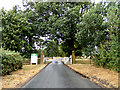 TL8424 : Marks Hall Road, Coggeshall by Geographer
