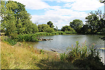 SO4465 : The Lake at Croft Castle by Des Blenkinsopp