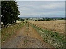 SP1729 : Track and farmland near Longborough by Philip Halling