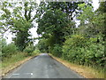 TL8727 : Tey Road, Earls Colne by Adrian Cable