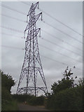 TL8627 : Electricity Pylon off Tey Road by Geographer