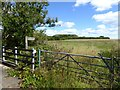 NU2207 : Gate and footpath near Low Buston by Oliver Dixon