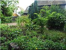 TQ3317 : Cottage garden on Fragbarrow Lane by David Howard