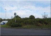 TQ3318 : The corner of Common Lane, Burgess Hill by David Howard