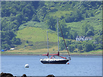 NS0178 : Yacht moored in Loch Riddon by Thomas Nugent