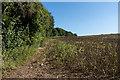 TQ2658 : Field edge by Ian Capper