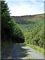 SH7206 : Forest road in Coed Pantperthog by John Lucas
