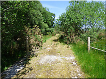 NS0180 : Old road by the A886 by Thomas Nugent
