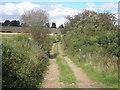 NO3602 : Farm track by Sandy Gemmill