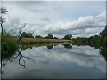 SE3766 : The River Ure, looking upstream [locally north-west] by Christine Johnstone