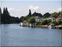 TQ0966 : The River Thames between Thames Meadow and Walton Lane by Mike Quinn