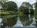 SE3268 : Former slipway, west bank, Ripon Canal by Christine Johnstone
