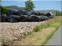 NR9983 : Silage bags by Thomas Nugent