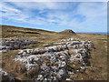 SH7783 : Gorsedd Uchaf over Great Orme Limestone by Matthew Hatton