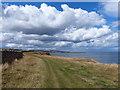 NU0150 : Northumberland Coast Path towards Berwick-upon-Tweed by Mat Fascione
