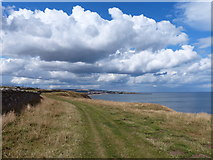 NU0150 : Northumberland Coast Path towards Berwick-upon-Tweed by Mat Fascione