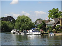 TQ0966 : The River Thames by Thames Meadow by Mike Quinn
