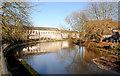 ST9173 : River Avon, Chippenham, Wiltshire 2014 by Ray Bird