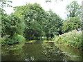 SE3269 : Ripon Canal, north of Nicholsons Bridge by Christine Johnstone