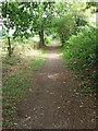 ST0107 : Cullompton: Goblin Lane 1 by Martin Bodman