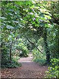TQ0866 : Footpath on Desborough Island opposite Sandhills Meadow by Mike Quinn