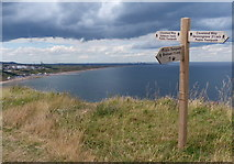 NZ6821 : Fingerpost along the Cleveland Way by Mat Fascione
