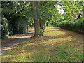 TL6907 : Trees and Green near Footpath, Chelmsford by Roger Jones