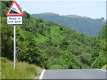 NS0482 : Keep in Low Gear sign by Thomas Nugent