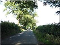 SD8653 : Minor road near Swinden Moor Head by JThomas
