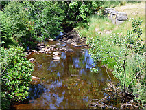 NS0584 : Balliemore Burn by Thomas Nugent