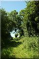 SE2974 : Green Lane by Derek Harper