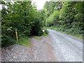 SH7405 : Track leading to Cwm Cadian Farm by John Lucas