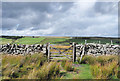 NY9511 : Pennine Way through the gate by Trevor Littlewood