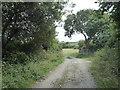 SW9862 : Track leading to Little Brynn by Rod Allday