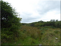 SW9759 : Wet ground on the southern edge of Tregoss Moor by Rod Allday