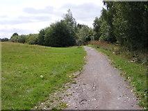 SO9593 : Regent Street Path by Gordon Griffiths
