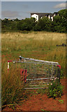 SX9066 : Shopping trolley, Nightingale Park by Derek Harper